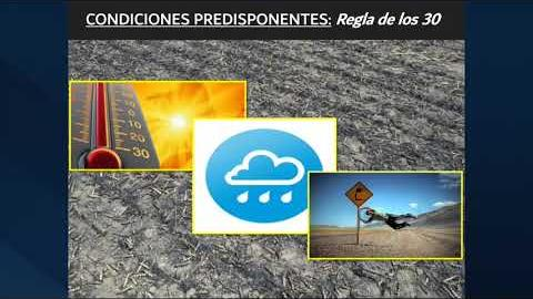 Embedded thumbnail for Federico Sanchez de INTA Manfredi